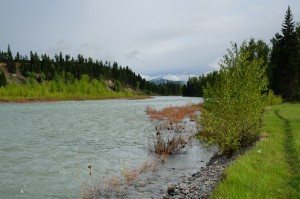 North Fork of Flathead River